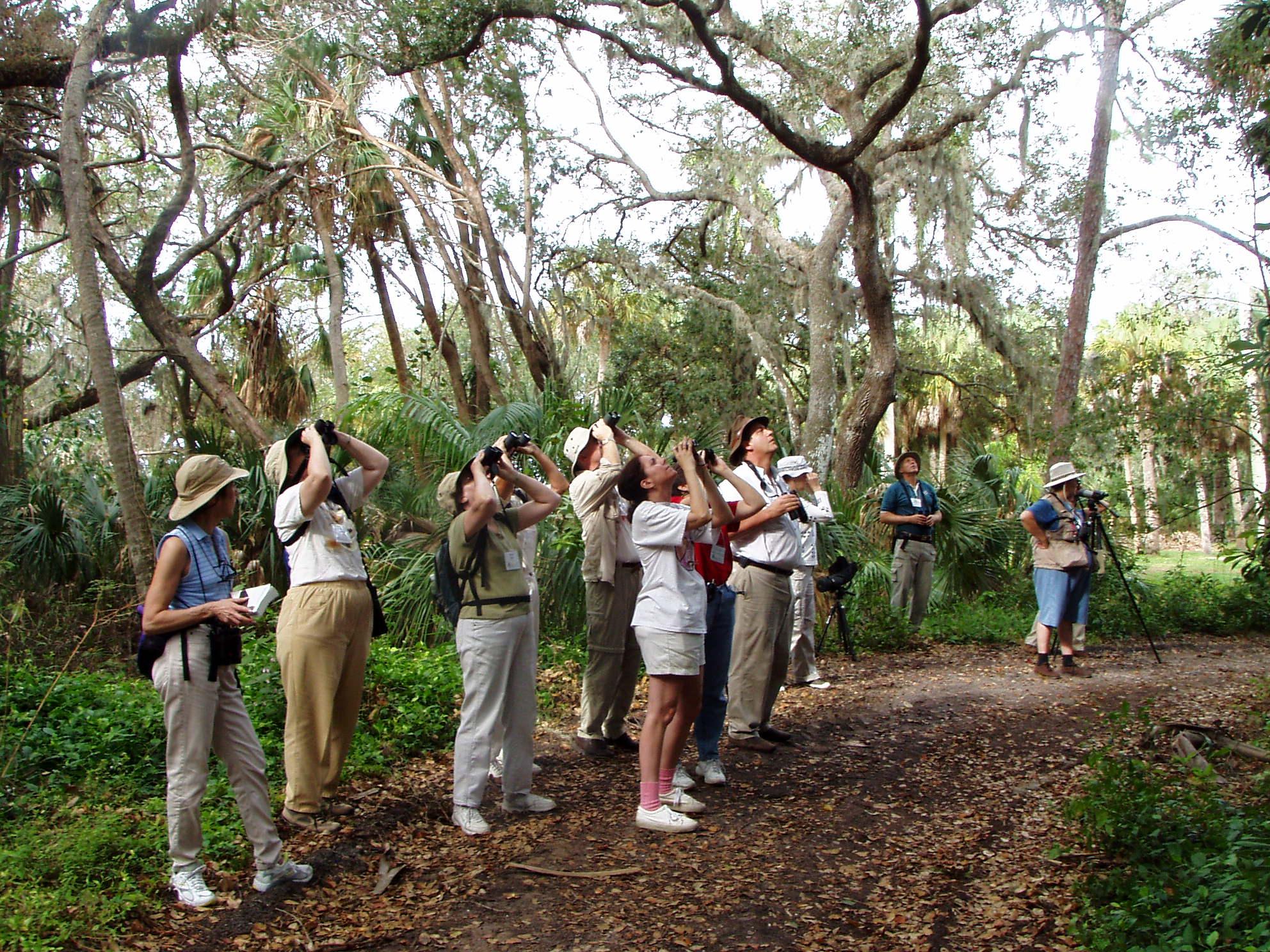 Binoculars on a bird