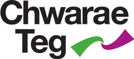 Image result for chwarae teg logo