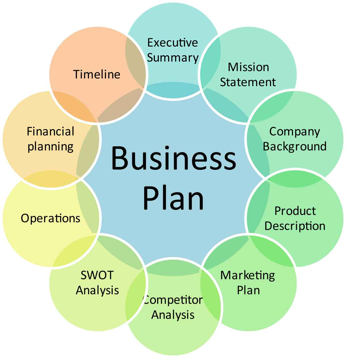 Details of a business plan