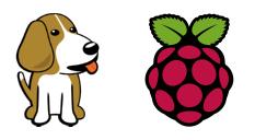 Logo BeagleBone & Raspberry Pi