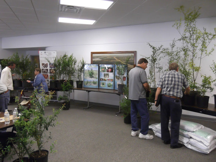 Pomegranate trees for sale at Annual Meeting