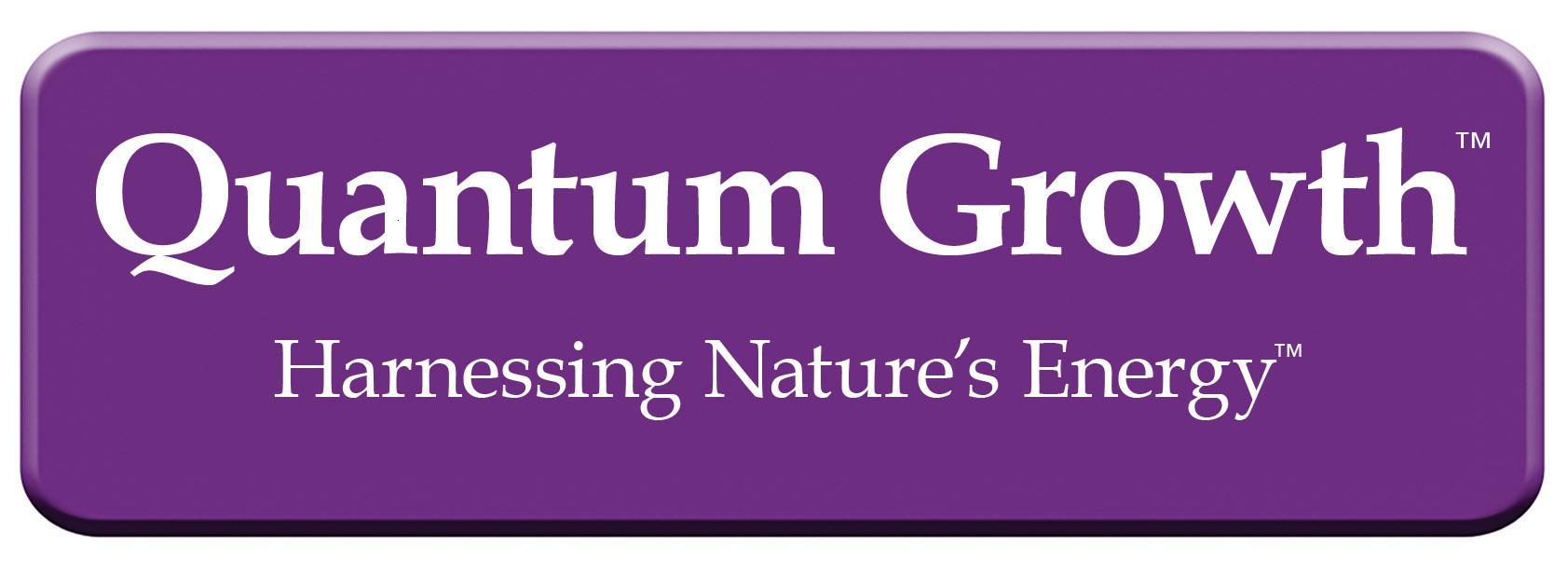 Karl Manges Quantum Logo