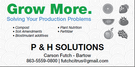 P&H Solutions Business Card