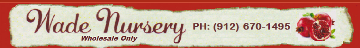 Logo Wade Nursery