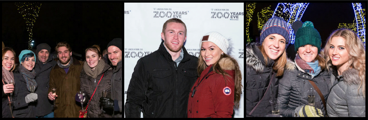 Zoo Year's Eve at Lincoln Park Zoo - Picture Collage