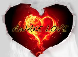 Awake Love Training School