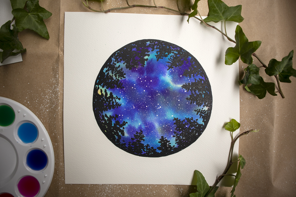 circle of trees with night sky