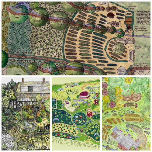 Permaculture designs!