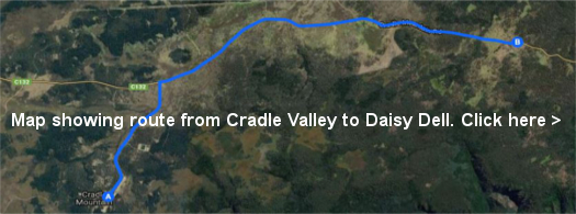 Directions to Daisy Dell