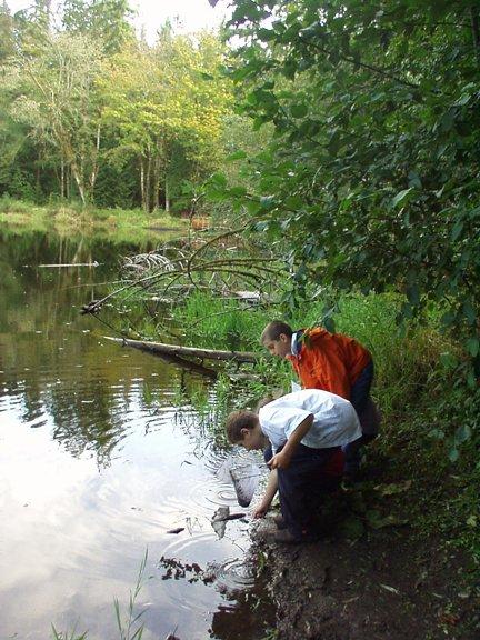 explorers dip netting at Pond 2