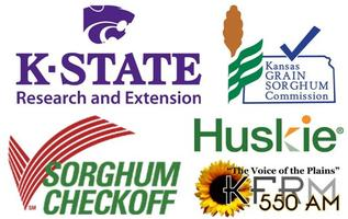 2013 In-Depth Sorghum Schools