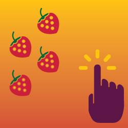Fruit Warrior