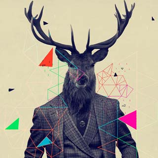 Woods stag