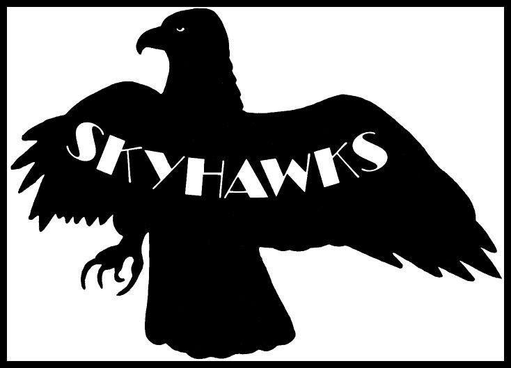 The Skyhawks Pic