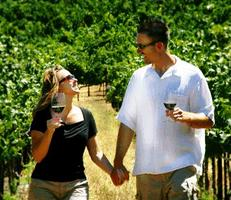 Romantic Valentines Winery Chauffeured Tour: Celebrate Love!