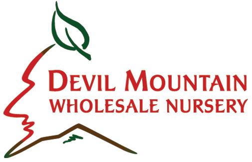 Devil Mountain Whole Sale Nursery