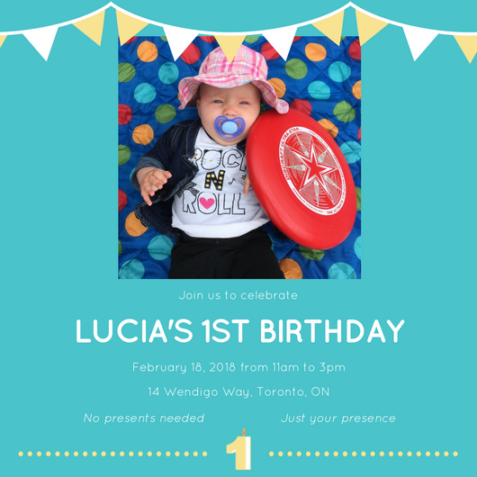 Lucia's First Birthday Party
