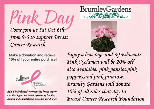Pink Day At Brumley Gardens Tickets Dallas Eventbrite