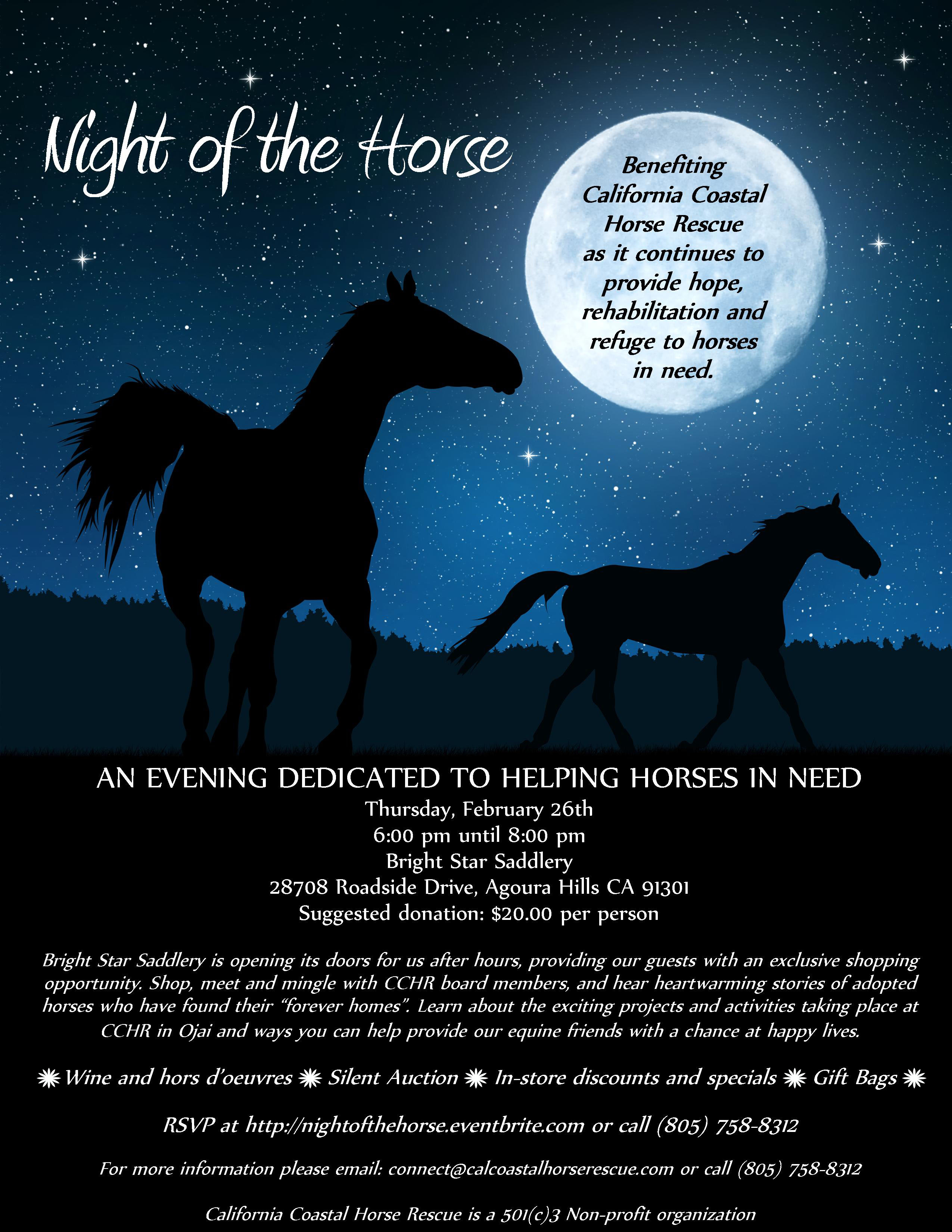 Night Of The Horse