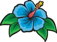 Hawaiian Night Flower