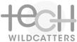 Tech Wildcatters
