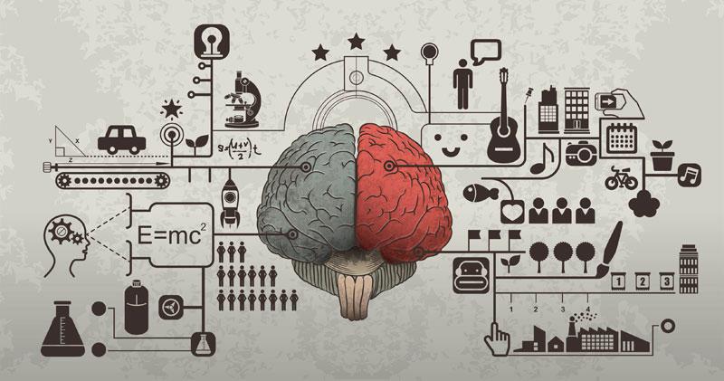 PoS brain image