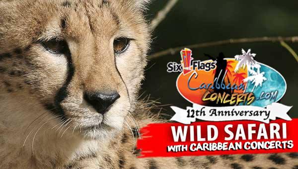 Wild Safari - Six Flags
