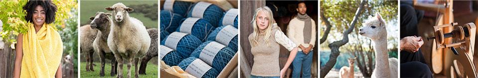 sheep, handmade garments, yarn