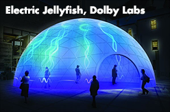 Electric Jellyfish - Dolby Laboratories