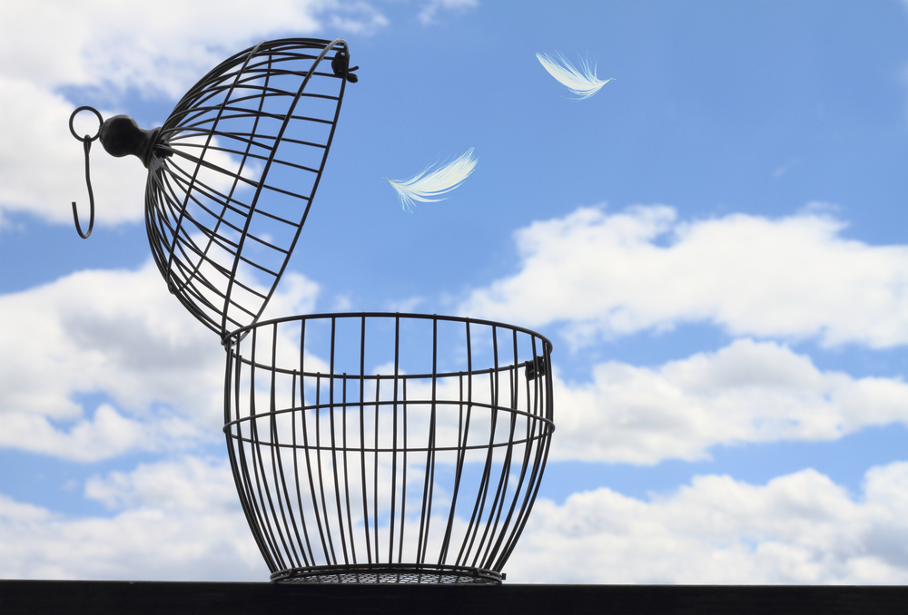 Open bird cage against a blue sky