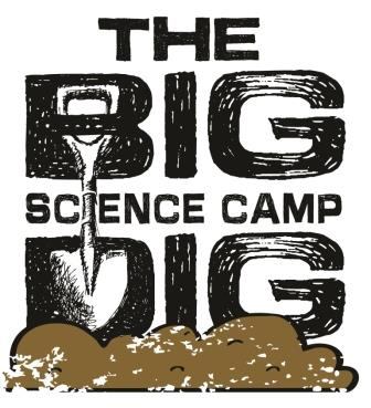 The Big Dig Logo