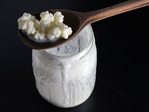 These kefir grains from the Caucasus region of Russia, over 1000 years old, can crowd out candida.