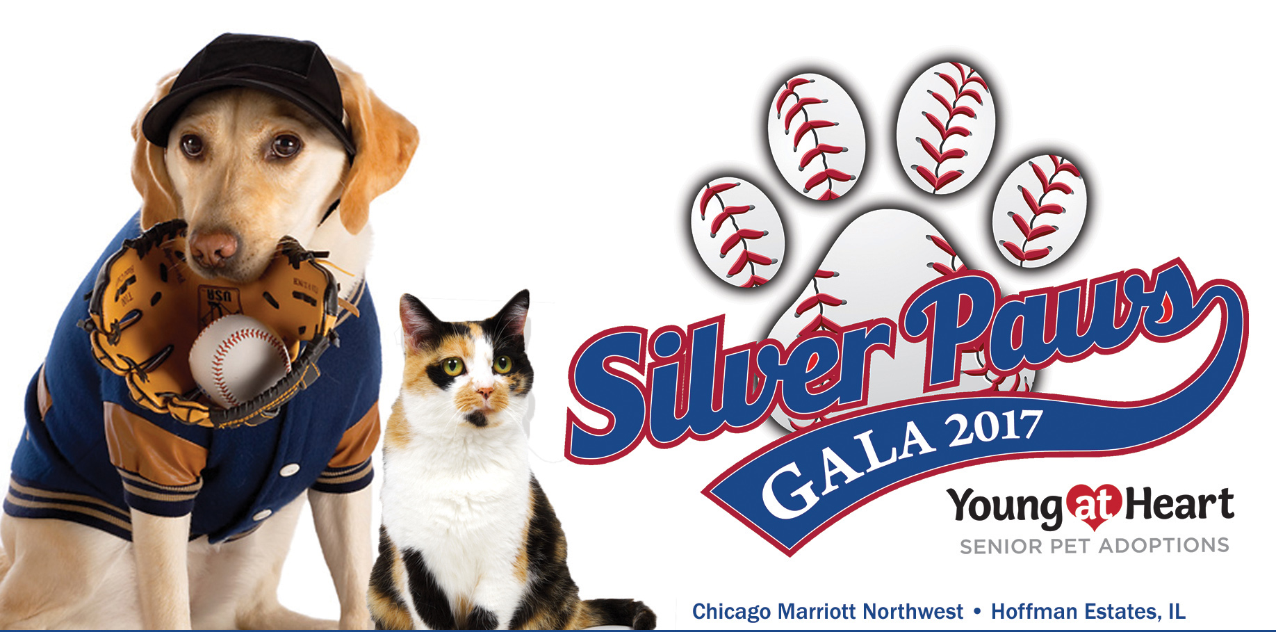 silver paws play ball 2017