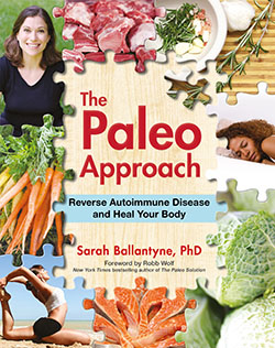NYT Best Seller, The Paleo Approach by Sarah Ballantyne