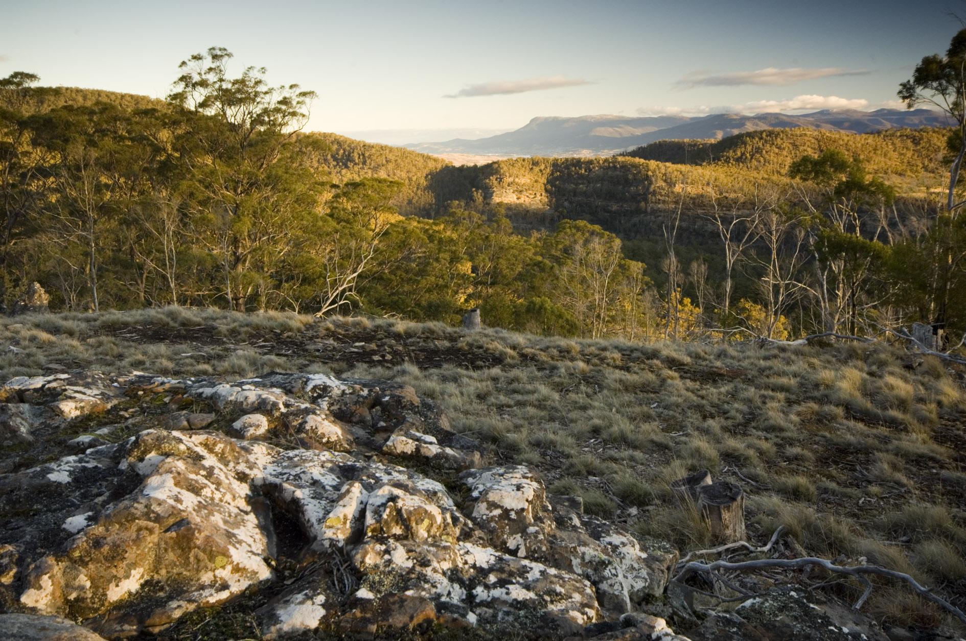 View of Wellington Range from Flatrock Reserve