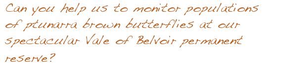 Can you help us monitor populations of Ptunarra brown butterfly at our spectacular Vale of Belvoir Reserve?