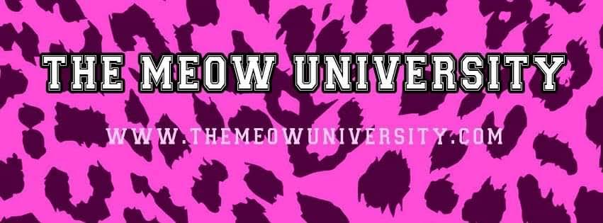 The Meow University