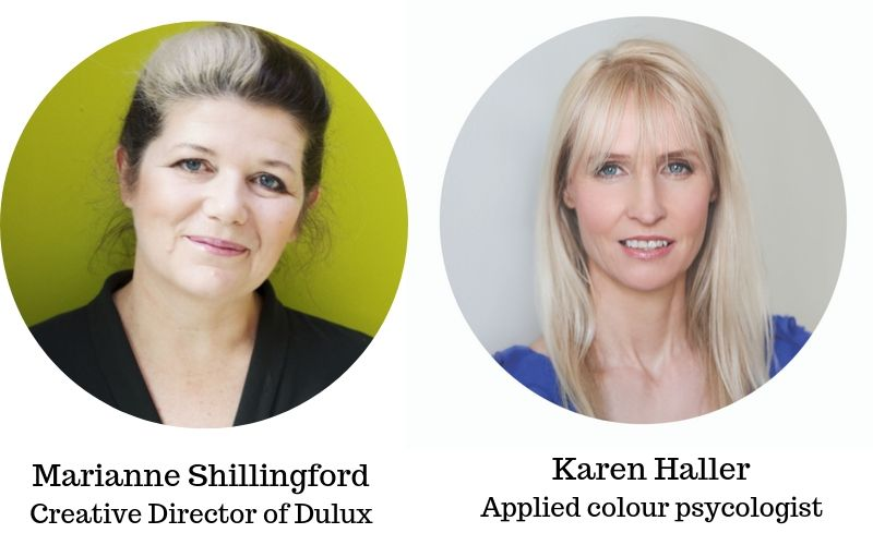 Experts in the world of colour