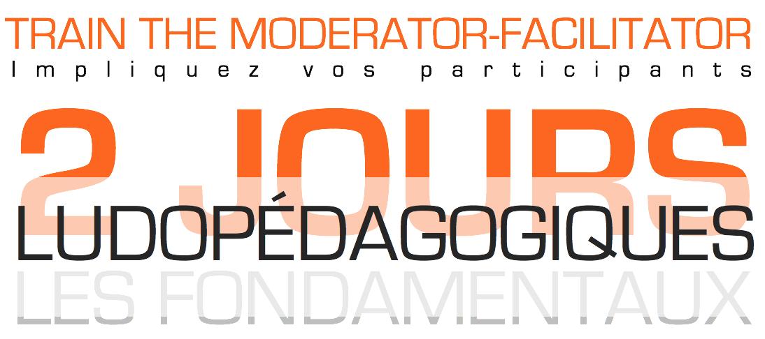 Moderator Facilitator