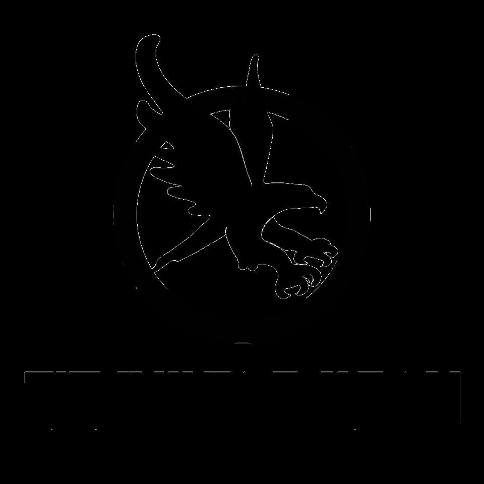 Titanium-Falcon-logo