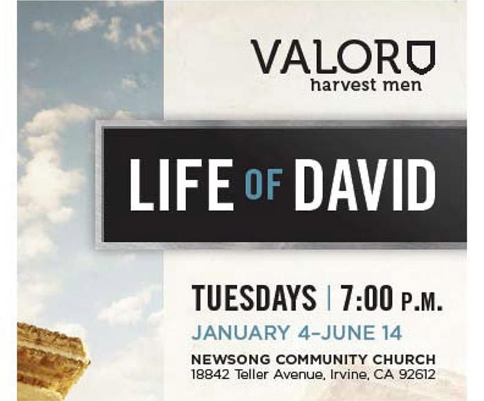 life of david bible study pdf