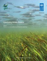 Catalysing Ocean Finance: Transforming Markets to Restore &...