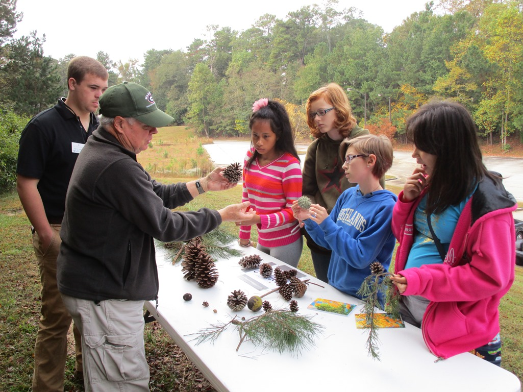 Tree ID with Girl Scouts