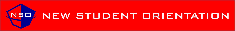 NSO Logo Banner