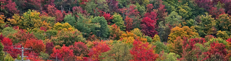 THE HEART OF THE CATSKILLS DURING THE HEART OF THE SPECTACULAR FALL-FOLIAGE SEASON!