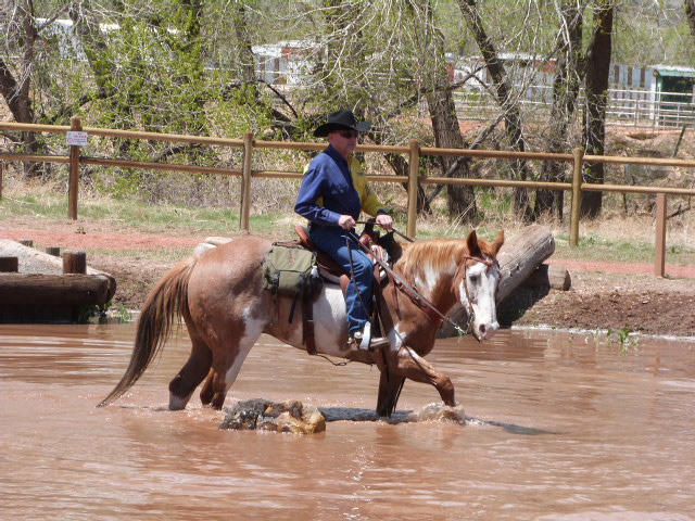 Pond Obstacle Area at the Equestrian Skills Course