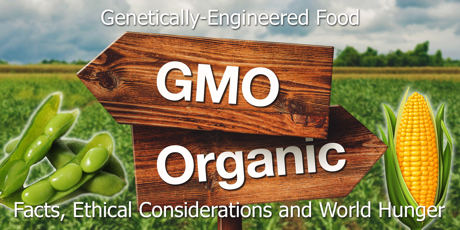 Geneticall-Engineered Food