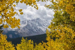 Autumn Fall Color Photography & Sightseeing Tours in Colorado