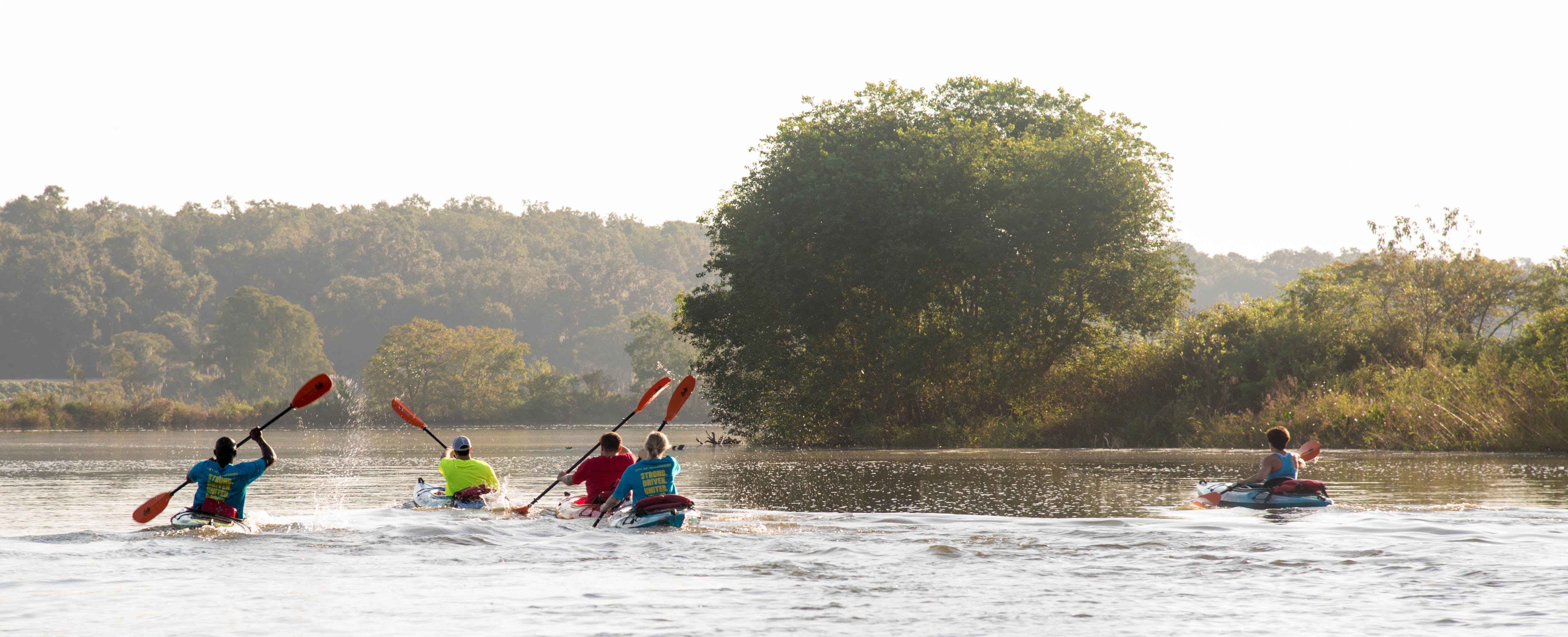 2018 Kayak