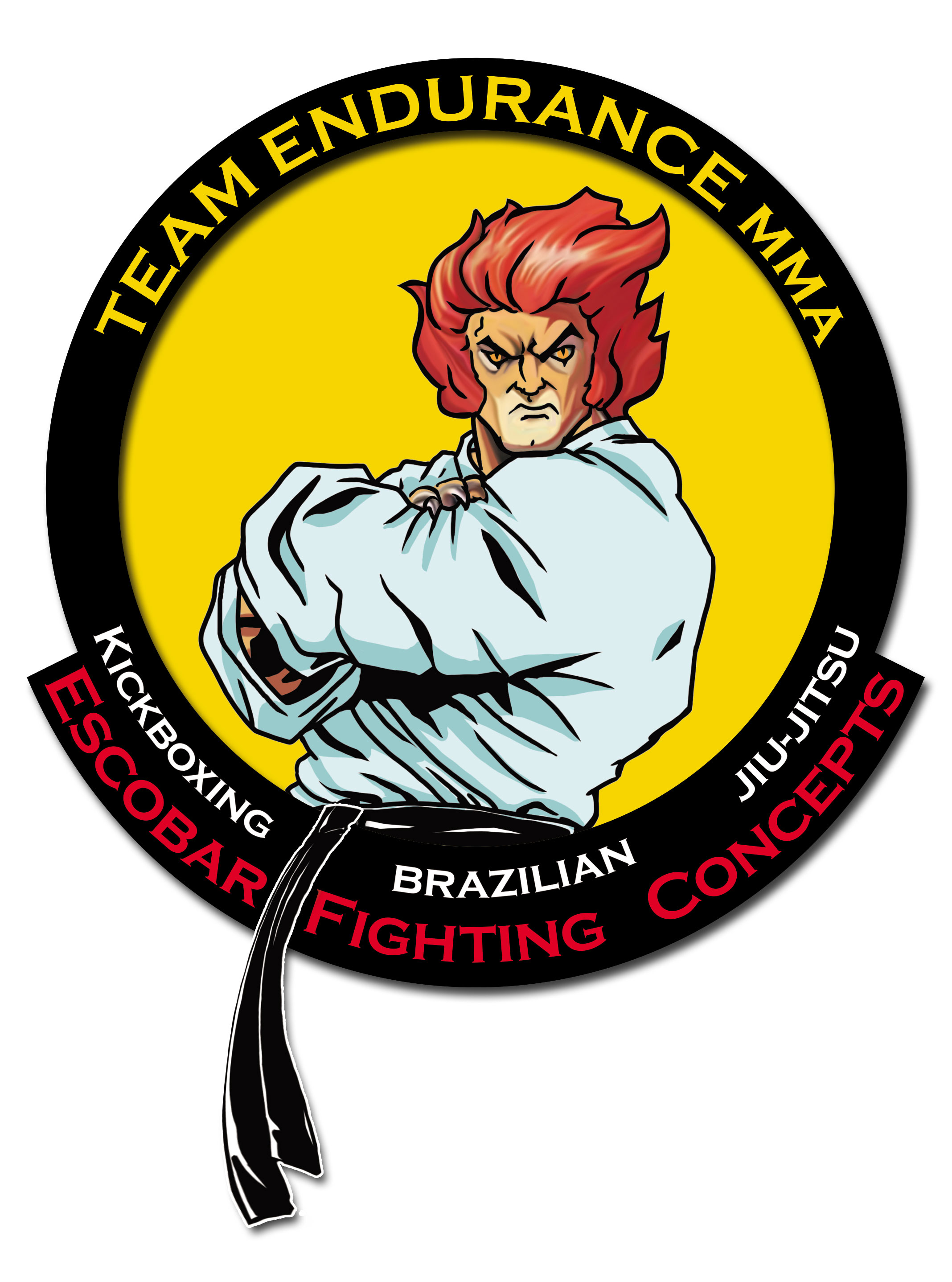 Team Endurance MMA